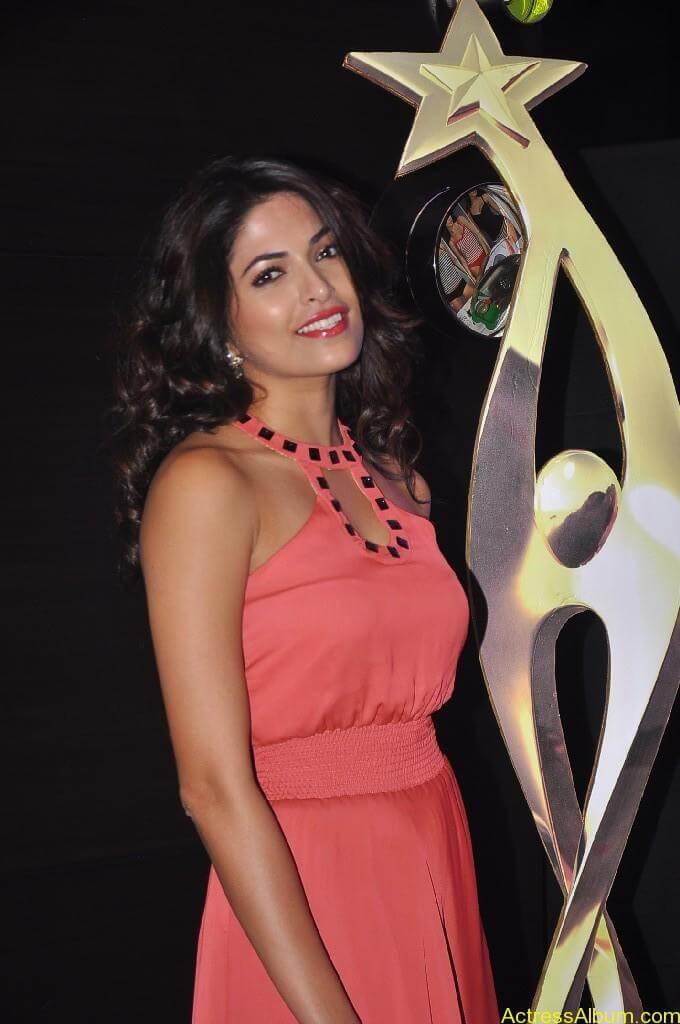 Parvathy Omanakuttan At SIIMA Awards 9