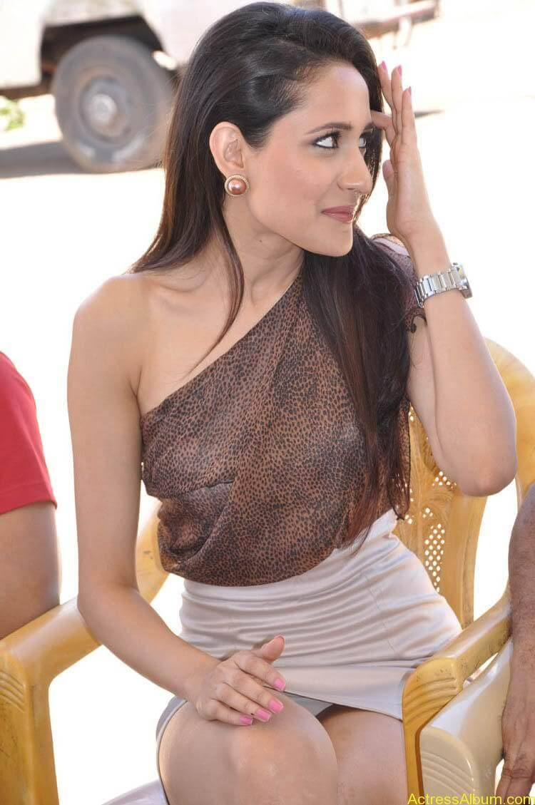 Pragya Latest Photoshoot (22)