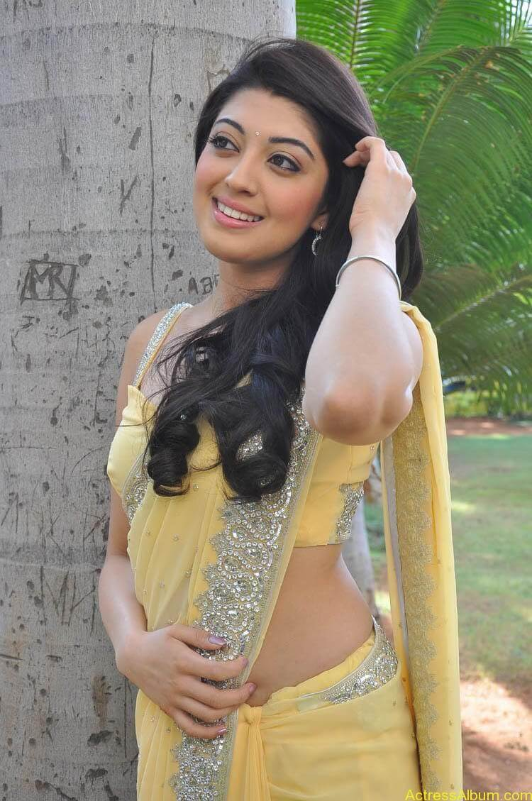 Pranitha Latest Photo Gallery (11)
