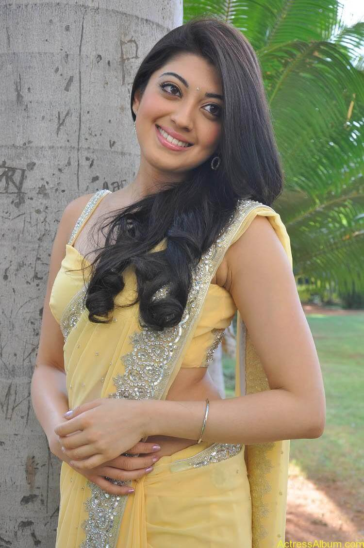 Pranitha Latest Photo Gallery (13)