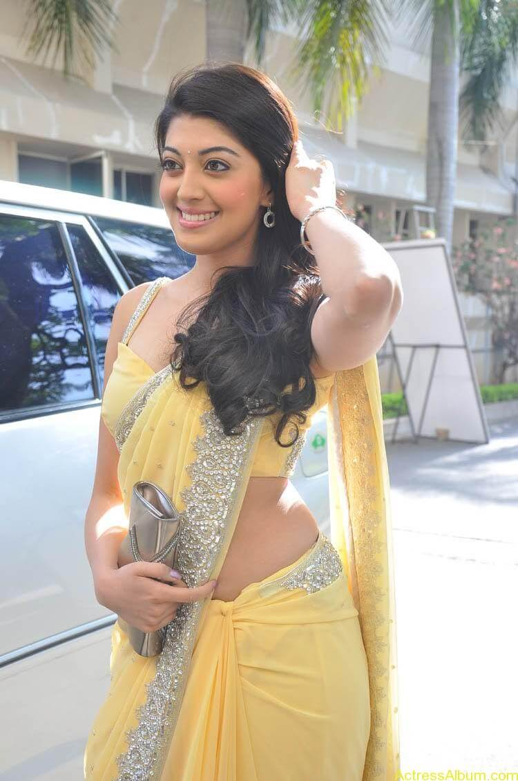 Pranitha Latest Photo Gallery (35)