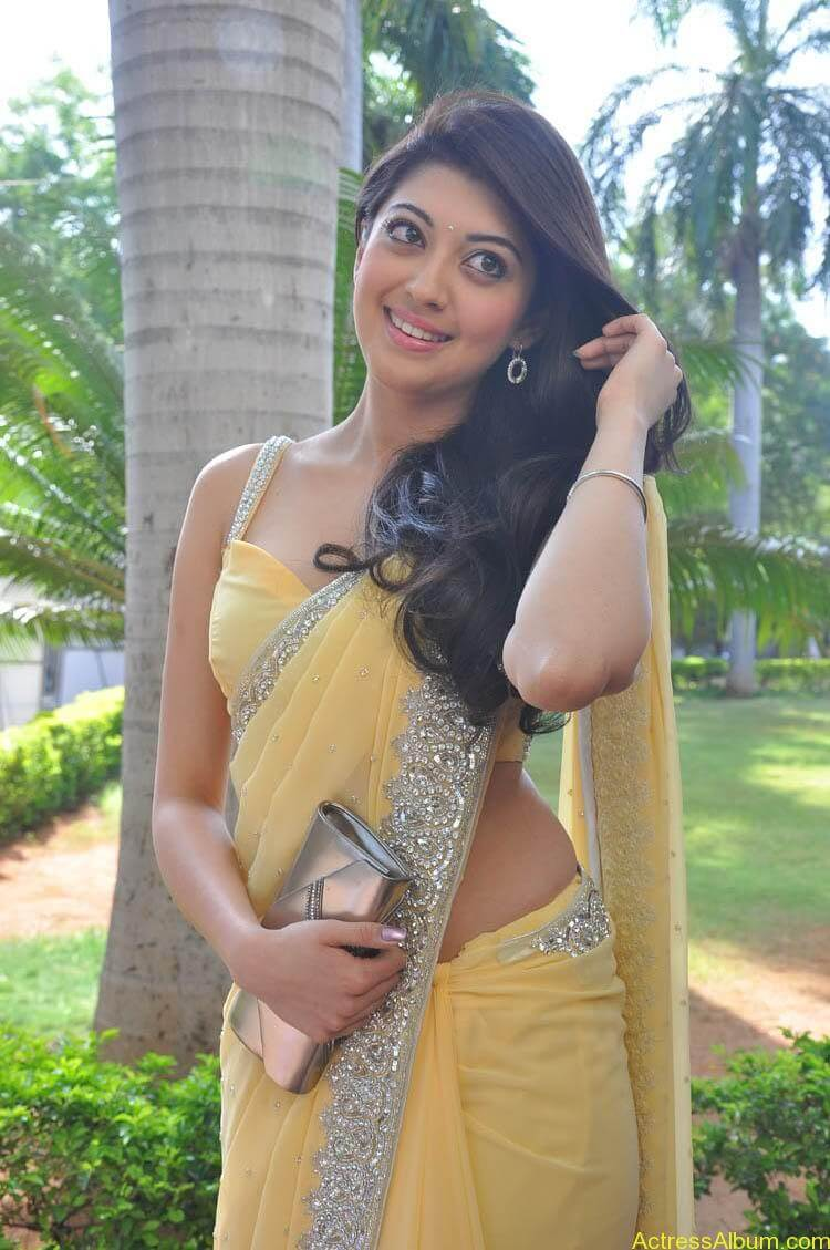 Pranitha Latest Photo Gallery (36)