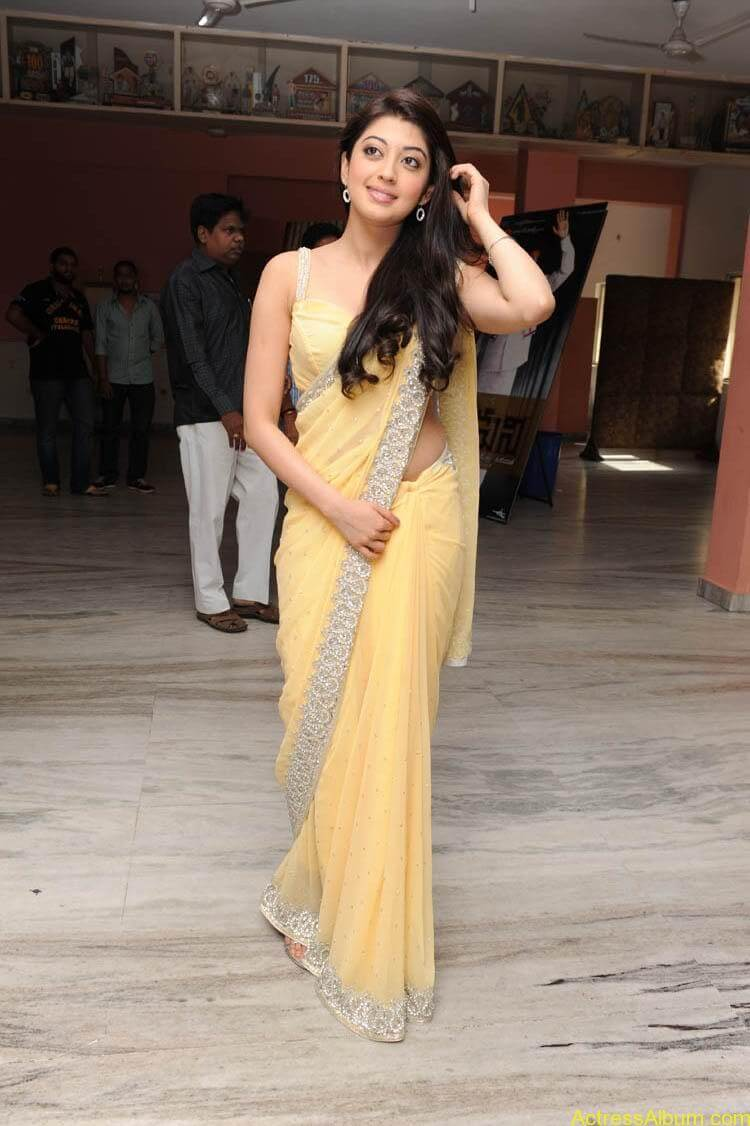 Pranitha Latest Photo Gallery (4)