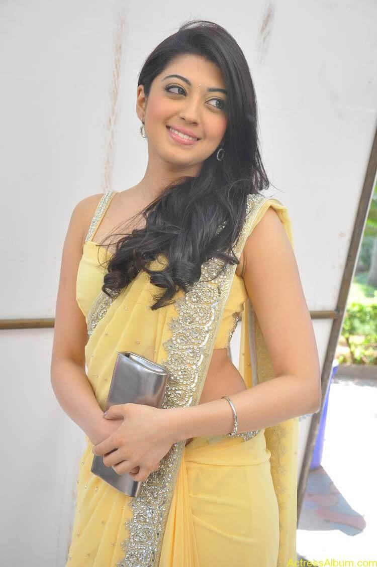 Pranitha Latest Photo Gallery (40)