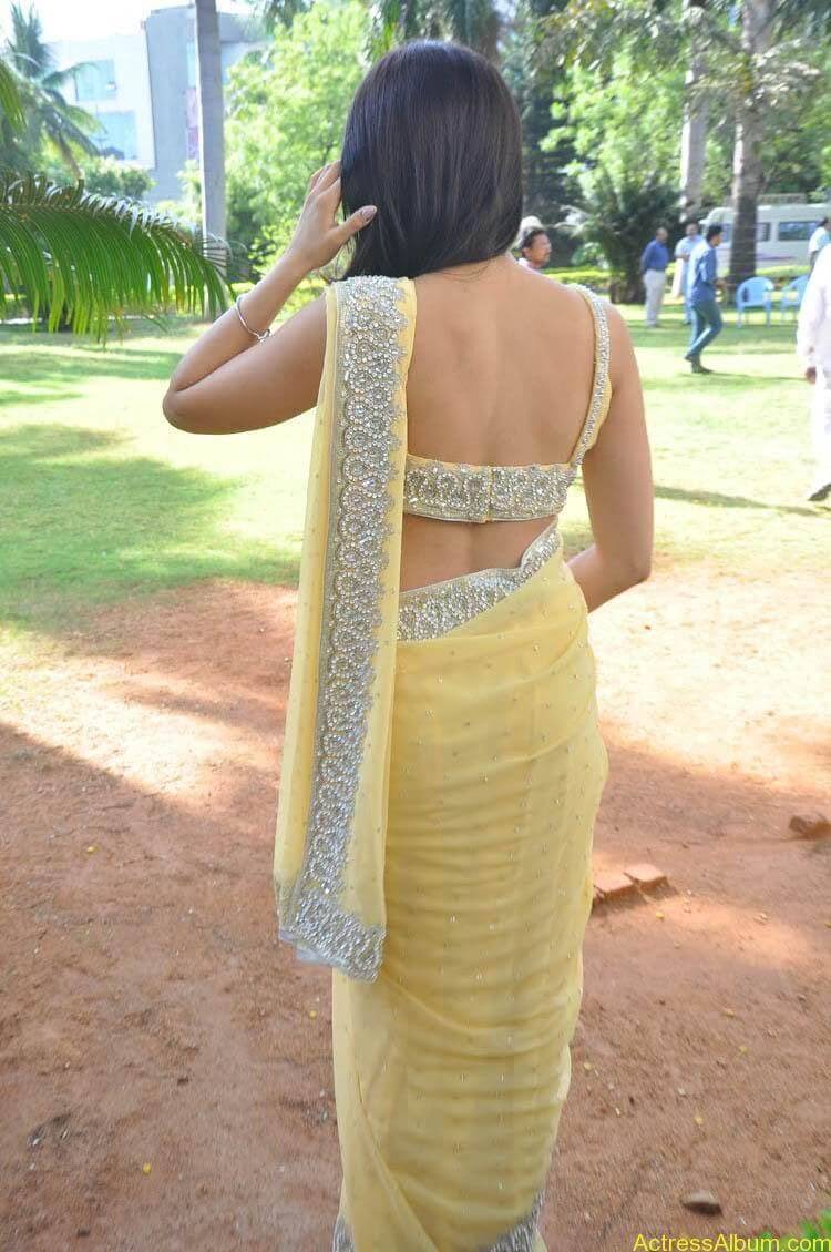 Pranitha Latest Photo Gallery (43)
