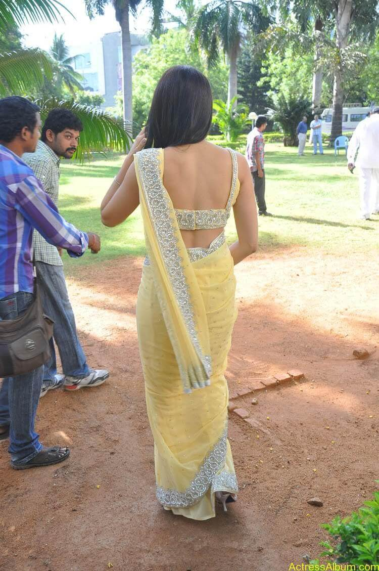 Pranitha Latest Photo Gallery (44)