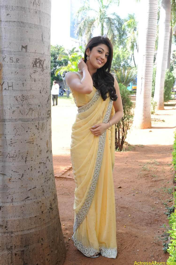 Pranitha Latest Photo Gallery (45)