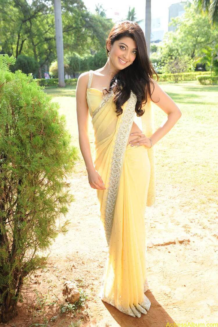 Pranitha Latest Photo Gallery (48)