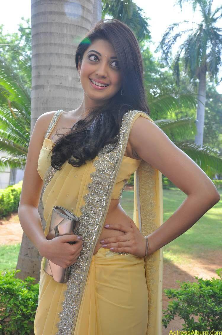 Pranitha Latest Photo Gallery (5)