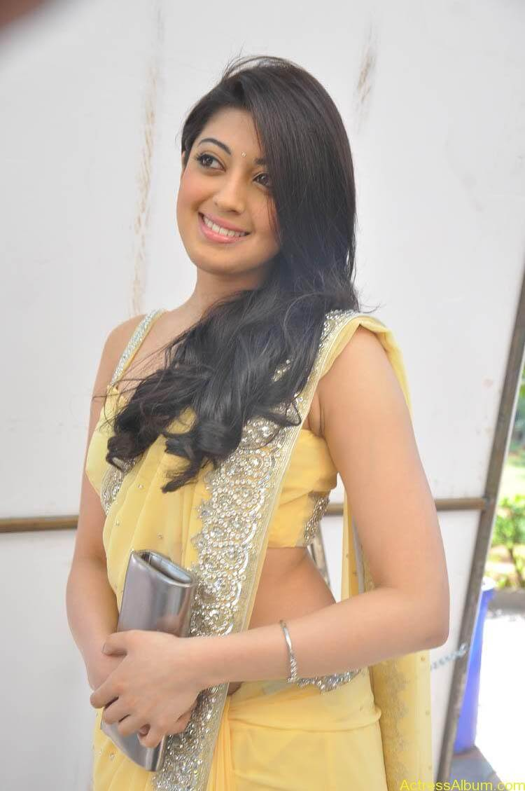 Pranitha Latest Photo Gallery (8)