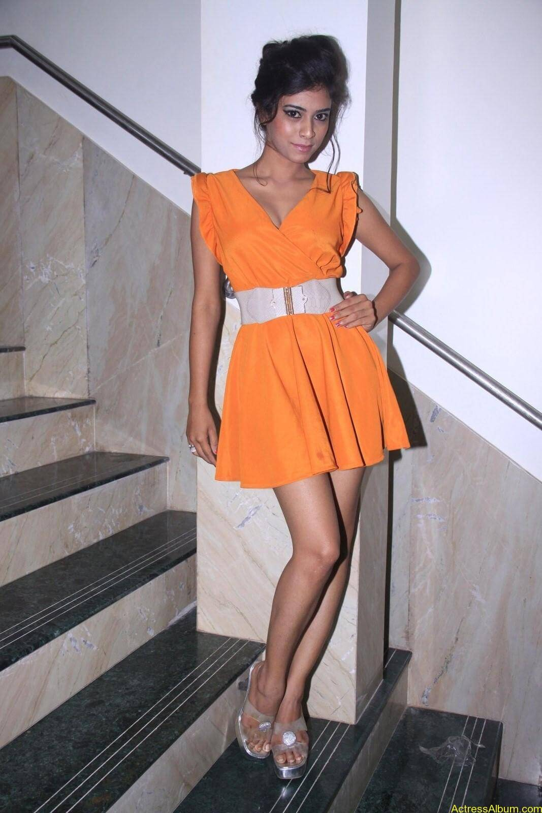 Rina Charaniya Hot Photo Shoot (4)