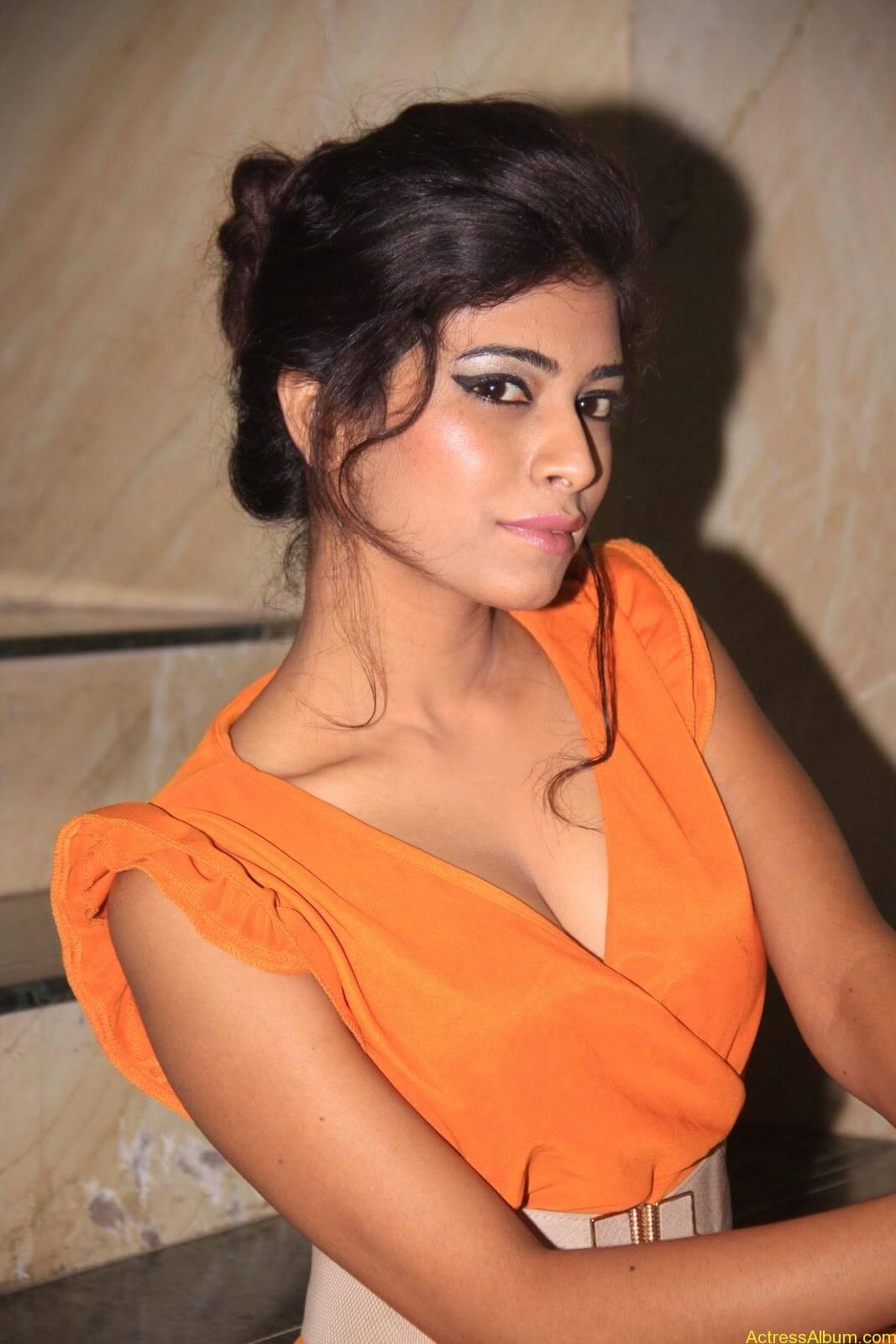 Rina Charaniya Hot Photo Shoot (6)