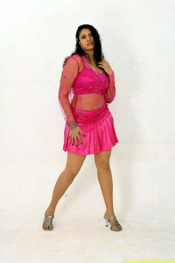 Sangavi Hot In Pink Dress (5)