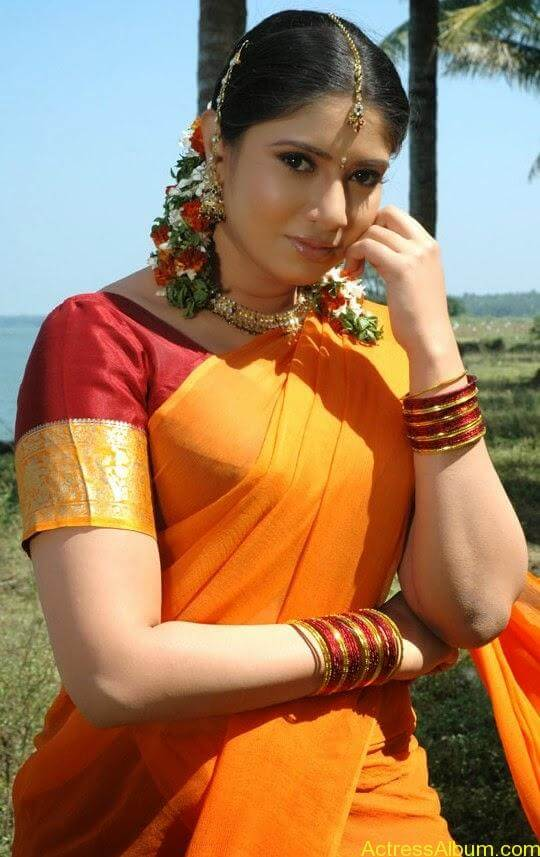 Sangavi Hot Pics In Sarees (1)