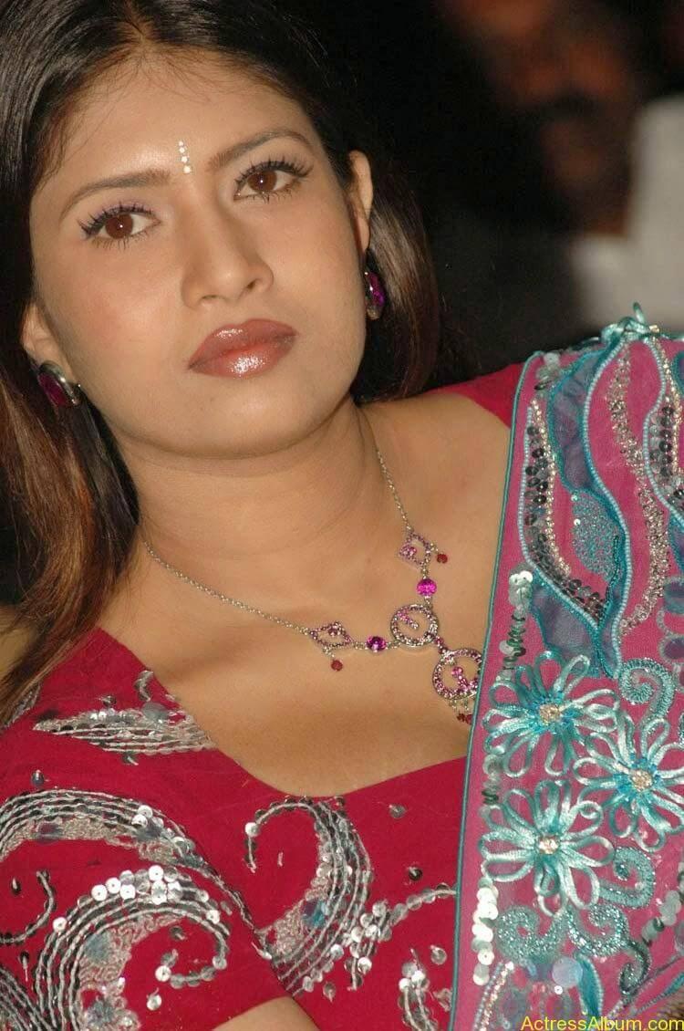 Sangavi Hot Pics In Sarees (24)