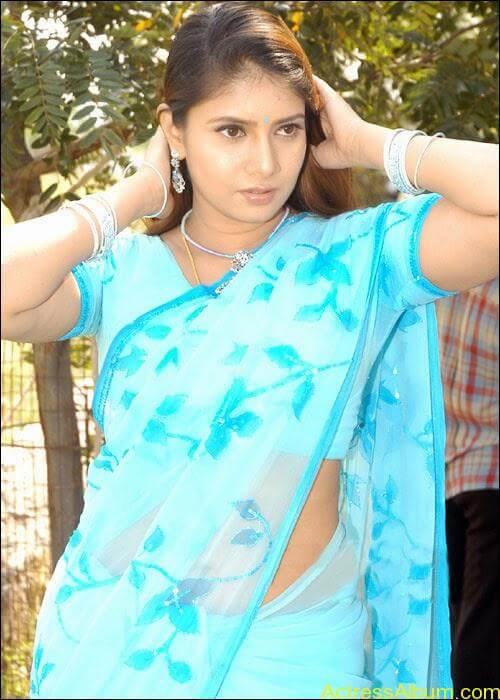 Sangavi Hot Pics In Sarees (31)