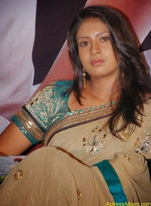 Sangavi Hot Pics In Sarees (35)