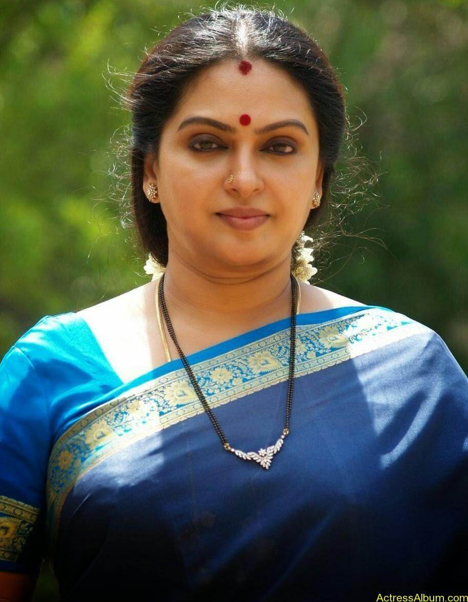 Seetha Aunty Hot Pics In Saree - Actress Album-4507