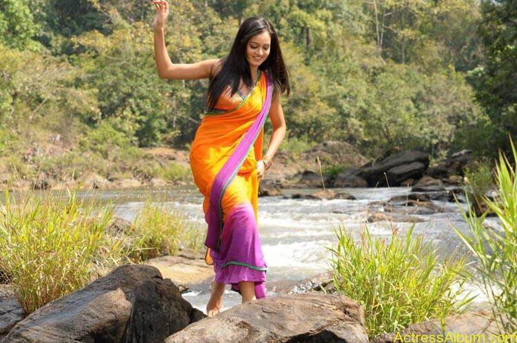 Shanvi-Hot-In-Saree-Stills- (1)