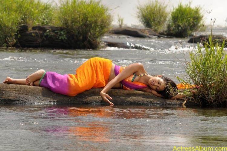 Shanvi-Hot-In-Saree-Stills- (10)