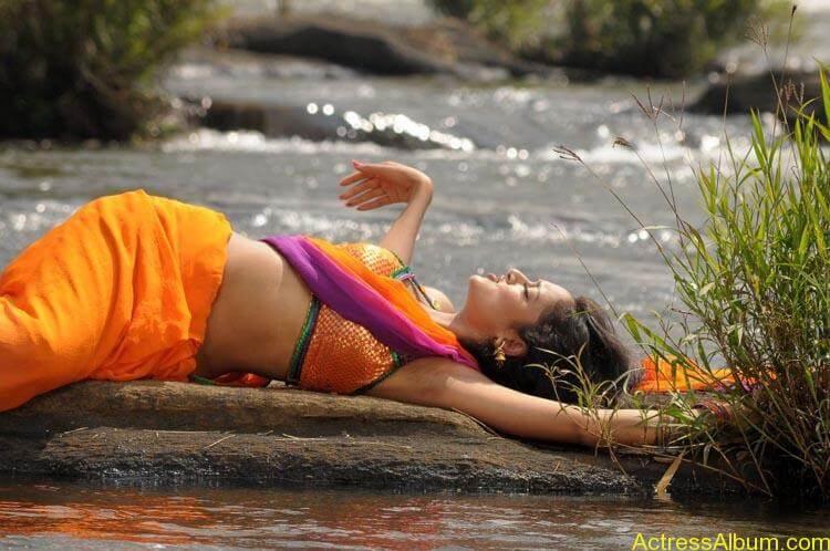 Shanvi-Hot-In-Saree-Stills- (11)