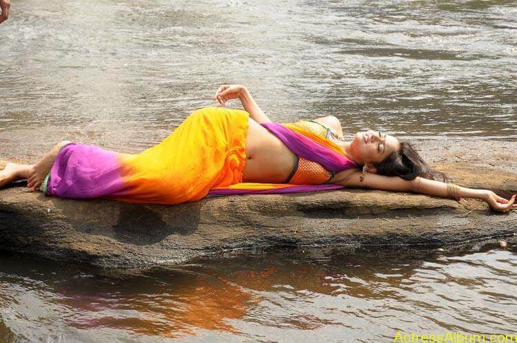Shanvi-Hot-In-Saree-Stills- (12)