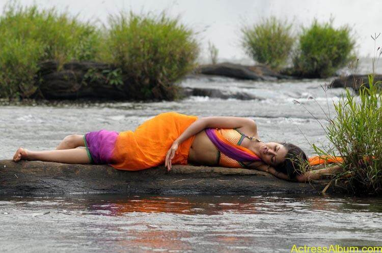 Shanvi-Hot-In-Saree-Stills- (14)