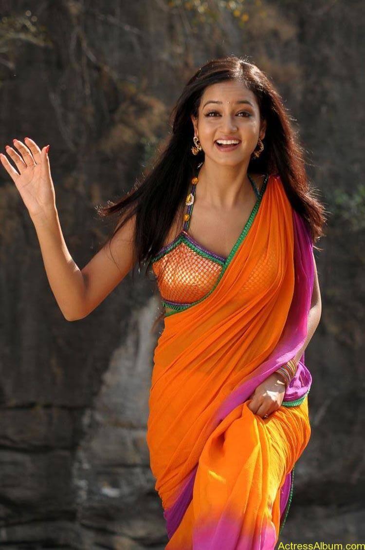Shanvi-Hot-In-Saree-Stills- (2)