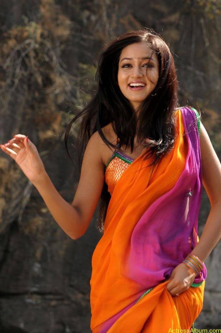 Shanvi-Hot-In-Saree-Stills- (3)