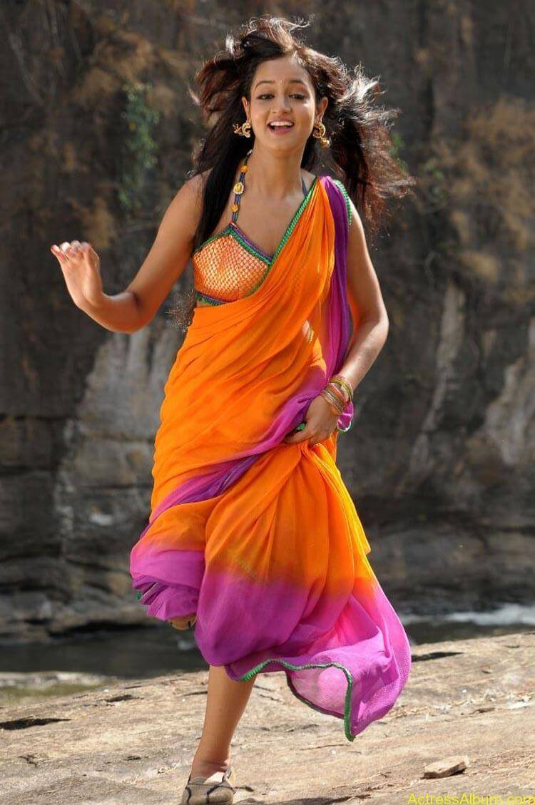 Shanvi-Hot-In-Saree-Stills- (5)