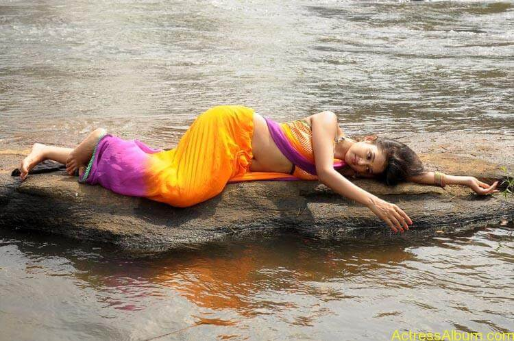 Shanvi-Hot-In-Saree-Stills- (7)