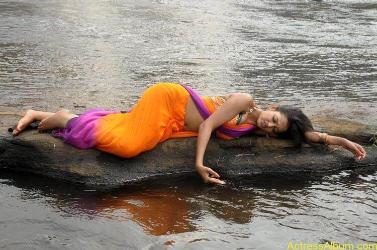 Shanvi-Hot-In-Saree-Stills- (8)