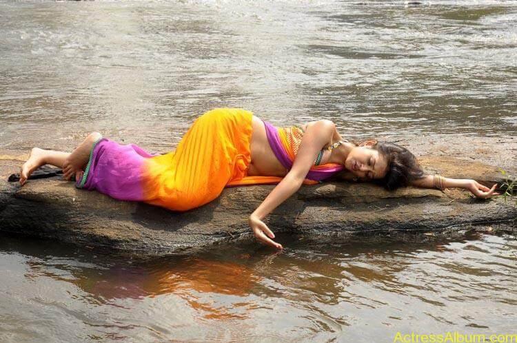 Shanvi-Hot-In-Saree-Stills- (9)