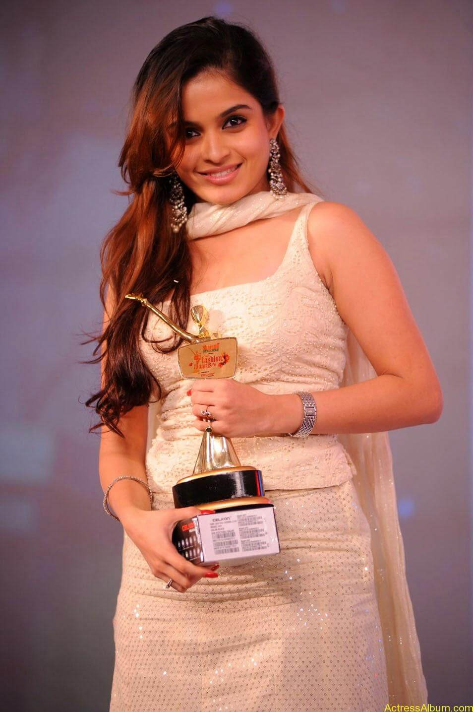 Sheena at Southspin Awards Function 2
