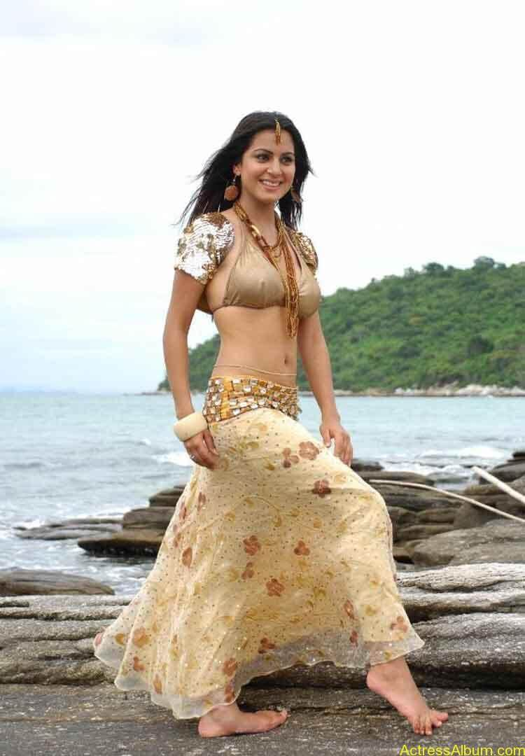 Shraddha Arya Hot Gallery (10)