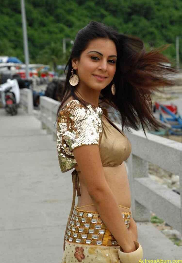 Shraddha Arya Hot Gallery (11)