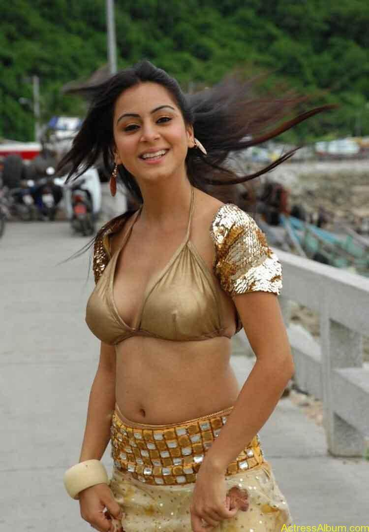 Shraddha Arya Hot Gallery (2)