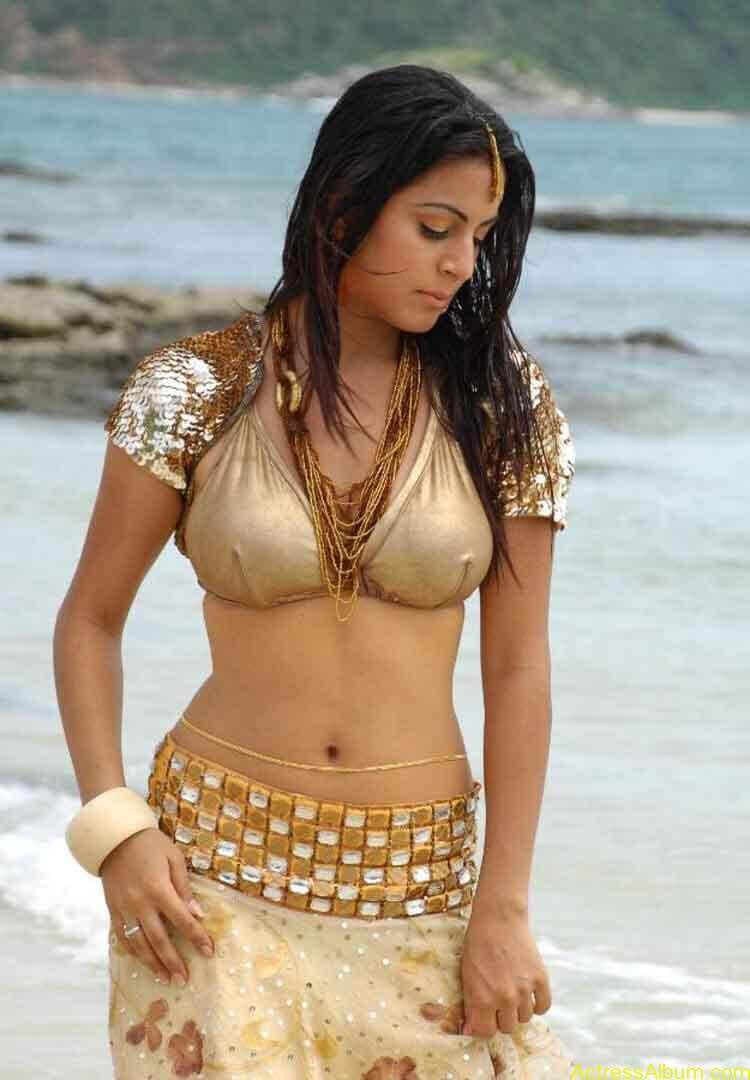 Shraddha Arya Hot Gallery (3)