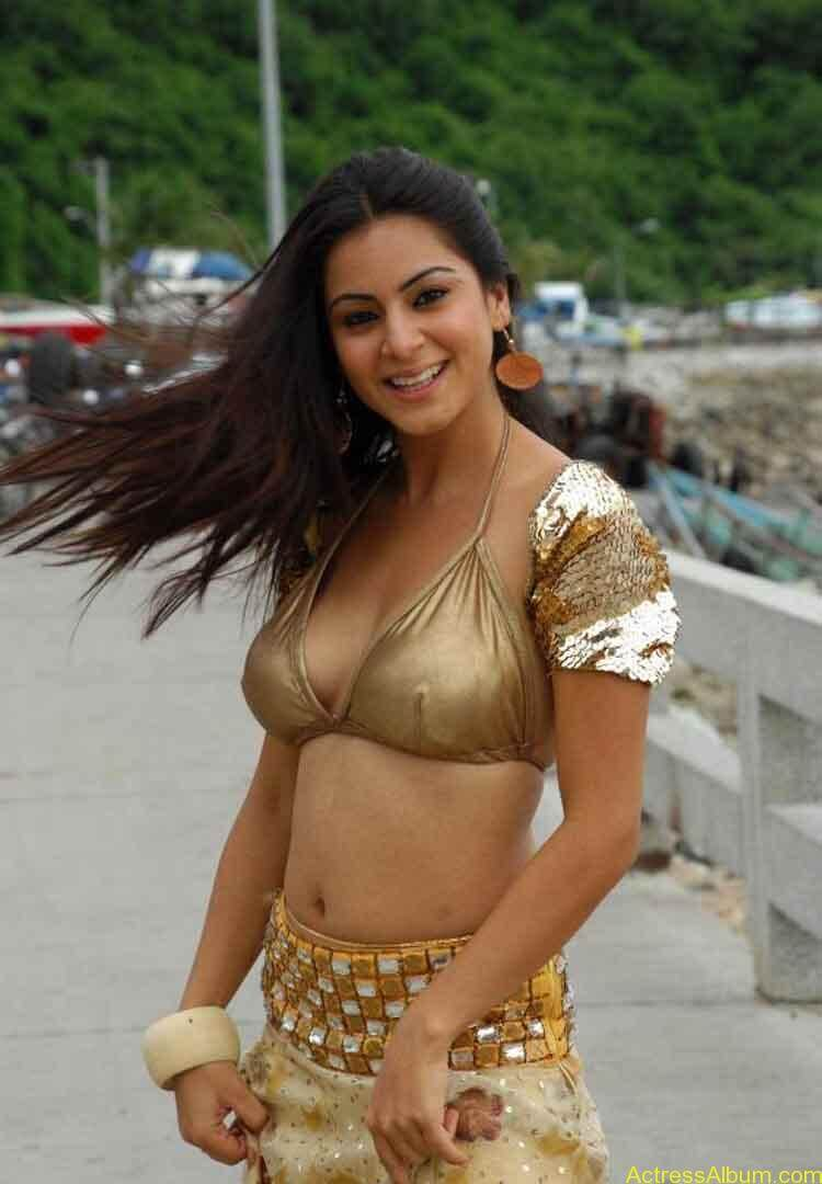 Shraddha Arya Hot Gallery (8)