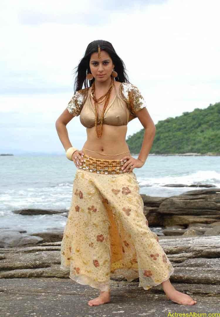 Shraddha Arya Hot Gallery (9)