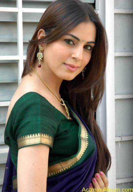 Shraddha Arya In Saree Stills (1)