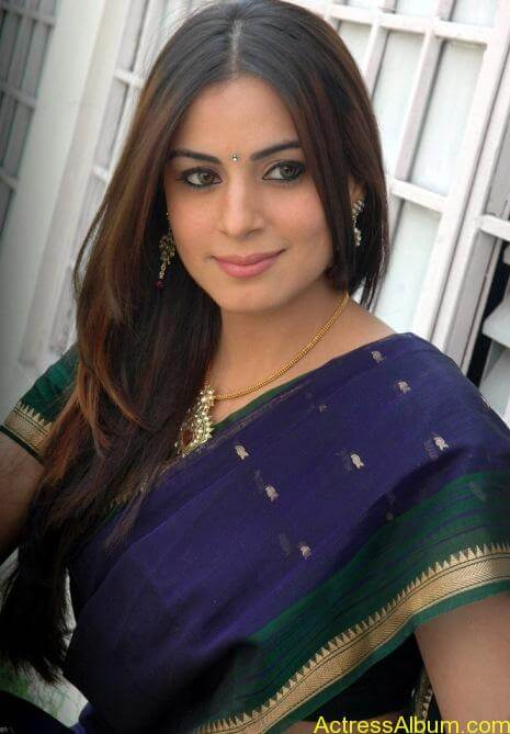 Shraddha Arya In Saree Stills (10)