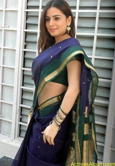 Shraddha Arya In Saree Stills (3)