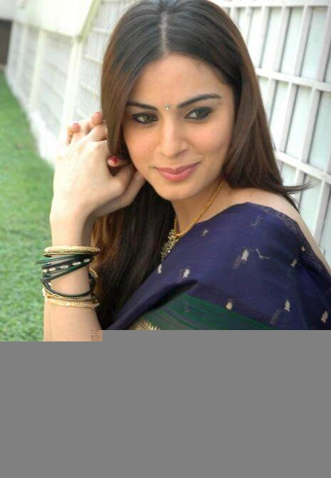 Shraddha Arya In Saree Stills (5)
