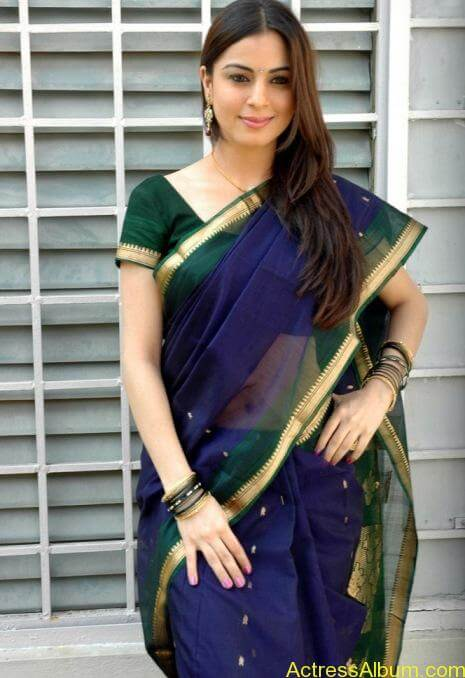 Shraddha Arya In Saree Stills (6)