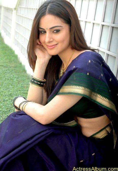 Shraddha Arya In Saree Stills (7)