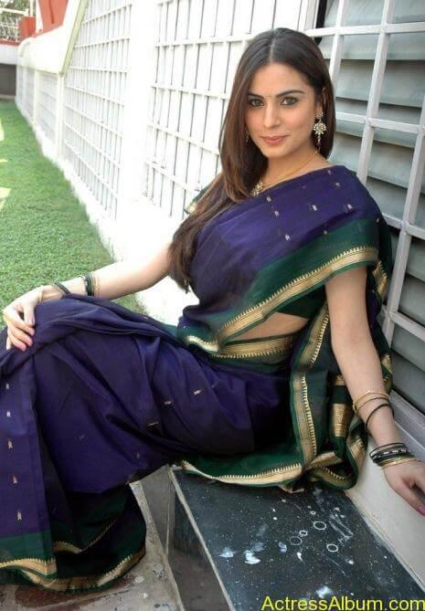 Shraddha Arya In Saree Stills (9)