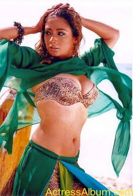 South Indian Masala Actress Cleavage and Navel Exposing Hot Gallery2