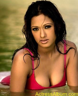 South Indian Masala Actress Cleavage and Navel Exposing Hot Gallery4