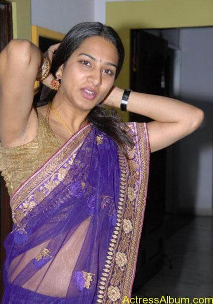 Surekha-Vani-hot-telugu-aunty-navel-show-in-saree (4)